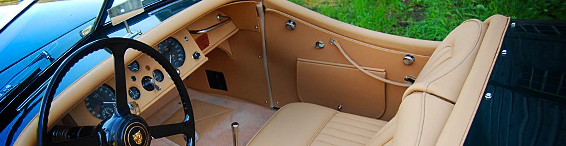 Bas-Jaguar-home-8